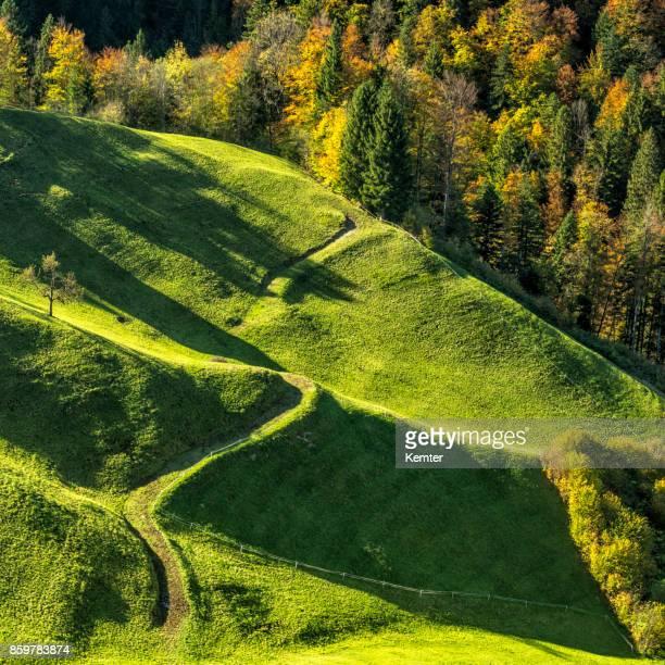 Paysage idyllique avec une route de campagne sinueuse en automne