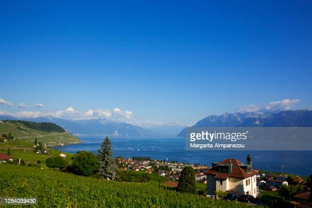 idyllic landscape with lake and vineyards at cully - vaud canton stock pictures, royalty-free photos & images