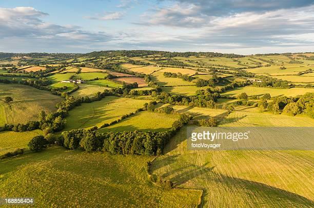 patchwork de paysages idylliques de champs verdoyants et de