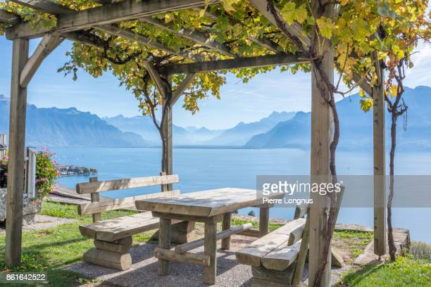 idyllic picnic spot, on the side of the road in the middle of the lavaux vinyards region, a unesco world heritage site. lake geneva, the swiss and french alps in the backdrop. canton of vaud, switzerland - gazebo stock pictures, royalty-free photos & images