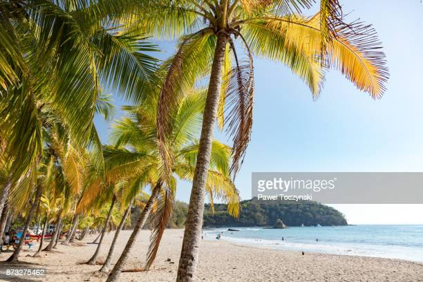 idyllic playa samara on the nicoya peninsula, costa rica - costa rica stock pictures, royalty-free photos & images