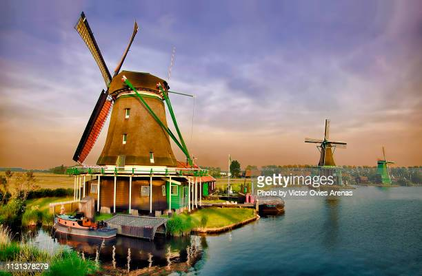 idyllic quintessential dutch landscape on the banks of the river zaan. beautiful and well-preserved historic windmills and houses at twilight in zaanse schans, netherlands - victor ovies fotografías e imágenes de stock