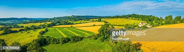Idyllic rural landscape green summer fields golden crops aerial panorama