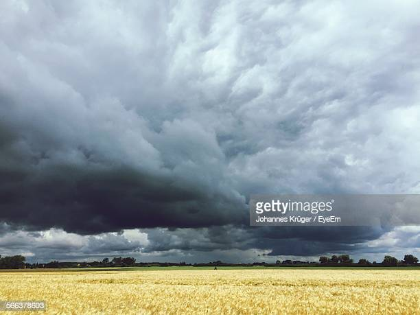 Idyllic Shot Of Farm Landscape Against Overcast Sky