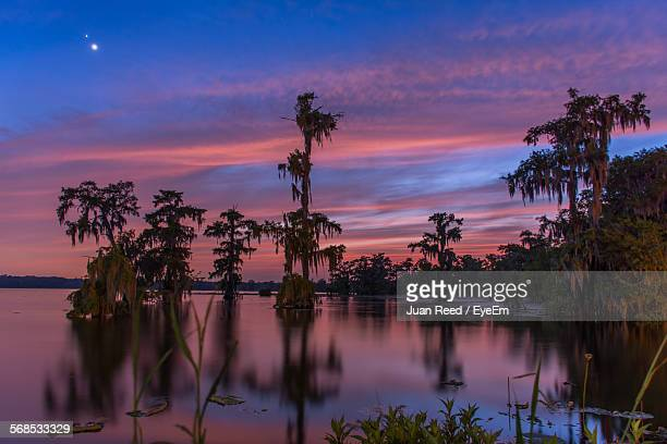 idyllic shot of lake martin with reflections at twilight - baton rouge stock pictures, royalty-free photos & images