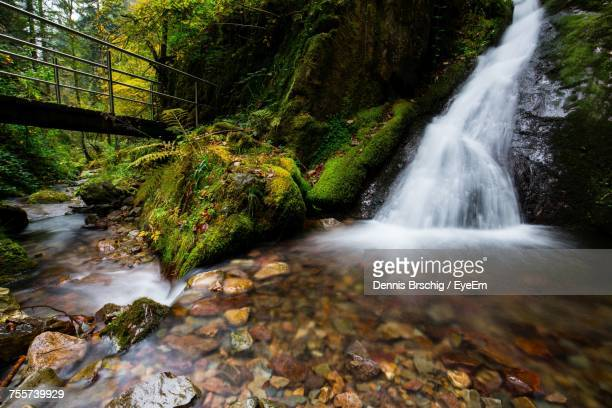 Idyllic Shot Of Waterfall In Forest