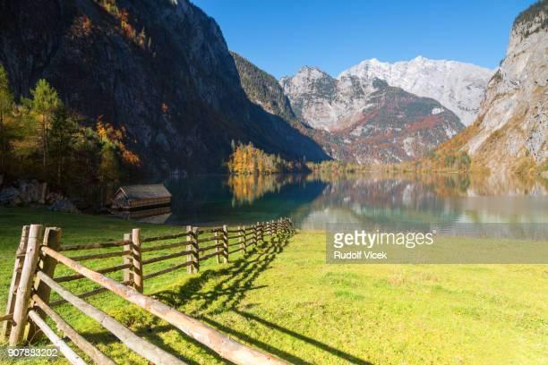 Idyllic tranquil autumn scenery, autumn coloured foliage, lake Obersee, Bavarian Alps