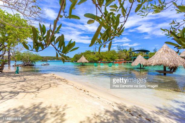 idyllic transparent water beach in the caribbean sea in a sunny day, roatan. - honduras stock pictures, royalty-free photos & images