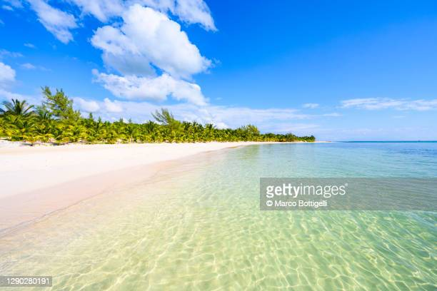 idyllic tropical beach, cancun, mexico - sand stock pictures, royalty-free photos & images