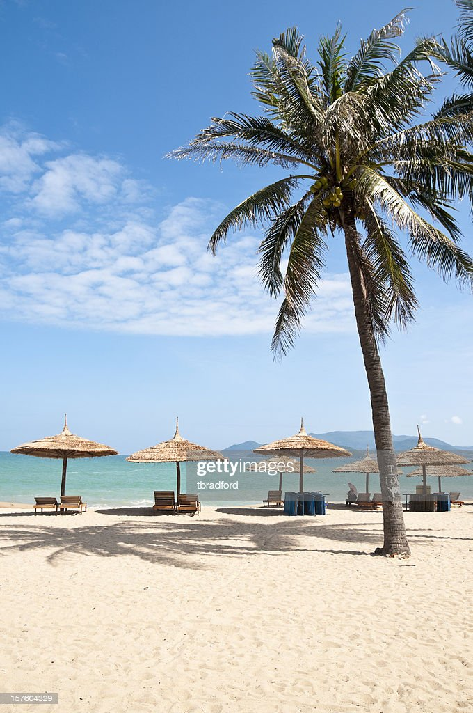 60 Top Nha Trang Pictures, Photos, & Images - Getty Images