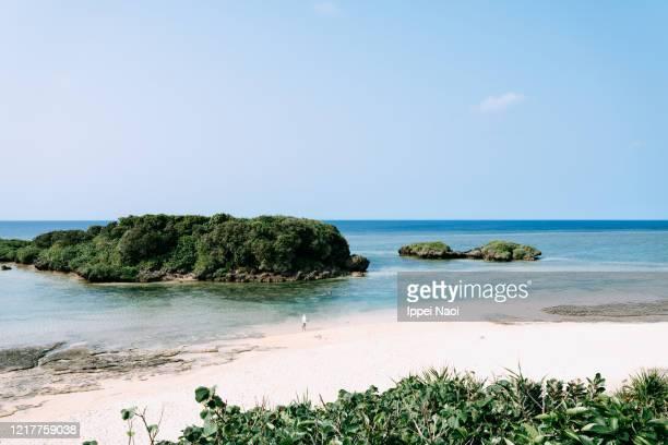 idyllic tropical beach of iriomote island, okinawa, japan - vacances à la mer photos et images de collection