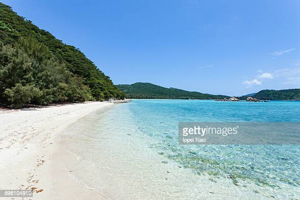 Idyllic tropical beach of Kerama Islands National Park, Zamami, Japan