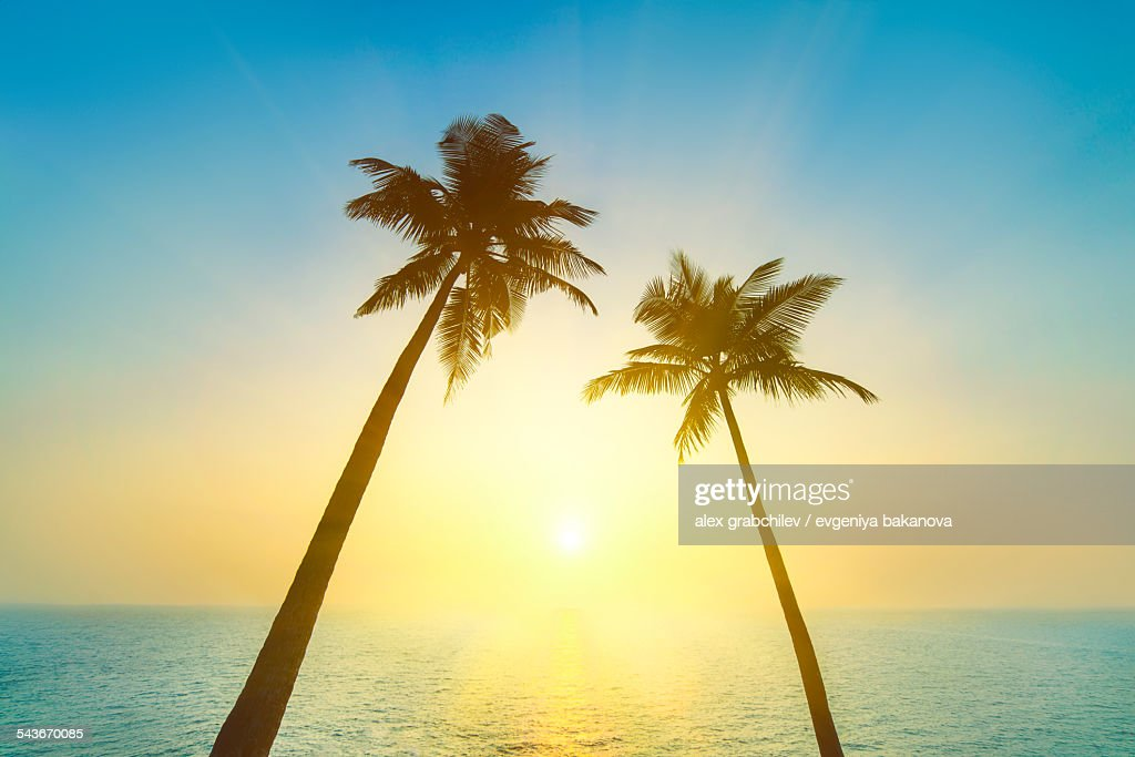 Idyllic tropical heaven : Stock Photo