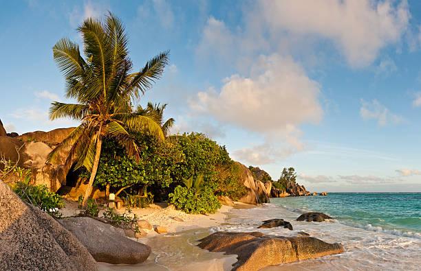 Idyllic Tropical Island Beach Palm Tree Lagoon Seychelles Wall Art