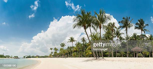 Idyllic tropical island beach palm trees lagoon panorama Sentosa Singapore