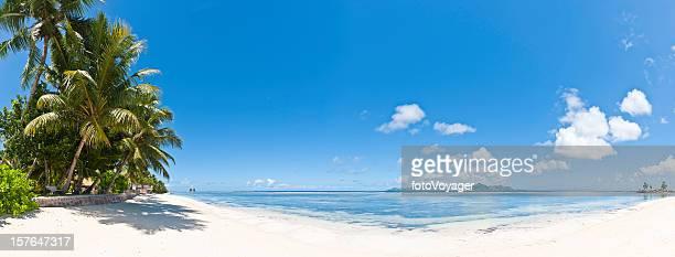 島の牧歌的な熱帯白い砂浜のビーチでヤシの木の海セイシェル諸島