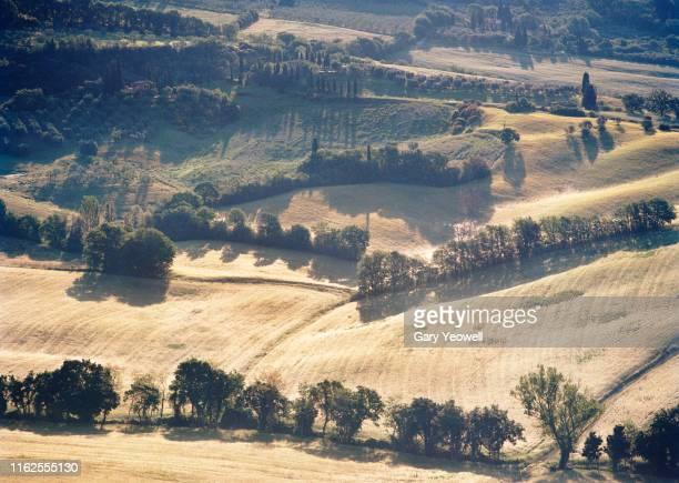 idyllic tuscany landscape at sunrise - terra coltivata foto e immagini stock