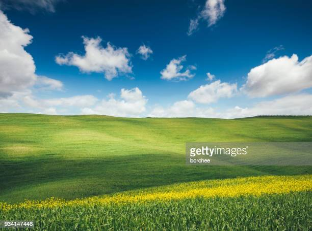 Idyllische Toskana Landschaft