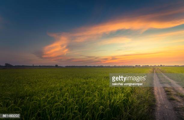 Idyllic View Countryside of Field Against Dramatic Sky at Sunset