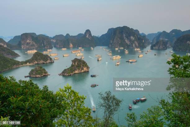 idyllic view from ti top island towards limestone karst formations of halong bay, north vietnam - halong bay imagens e fotografias de stock