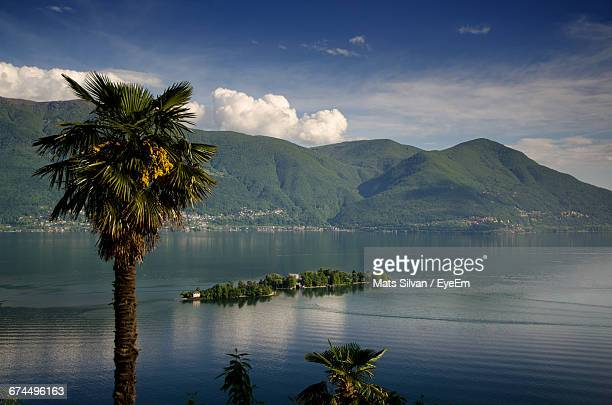 Idyllic View Of Island And Palm Tree On Lake