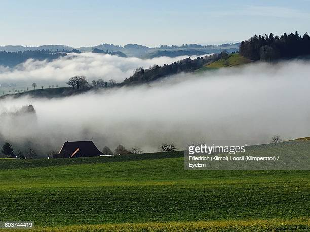 Idyllic View Of Landscape During Foggy Weather