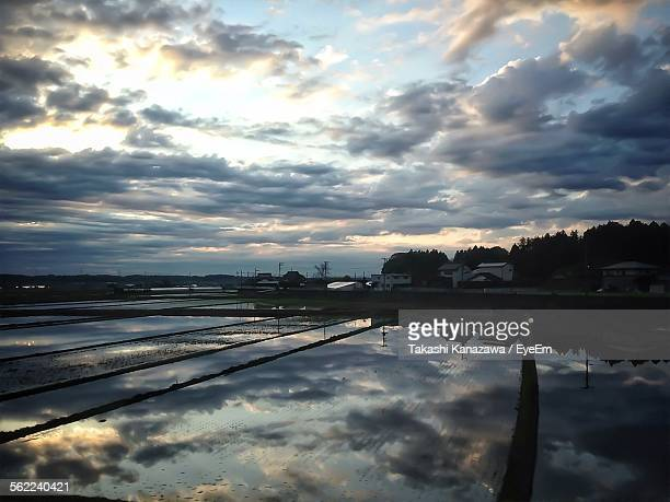 Idyllic View Of Rice Paddy Field With Sky Reflections
