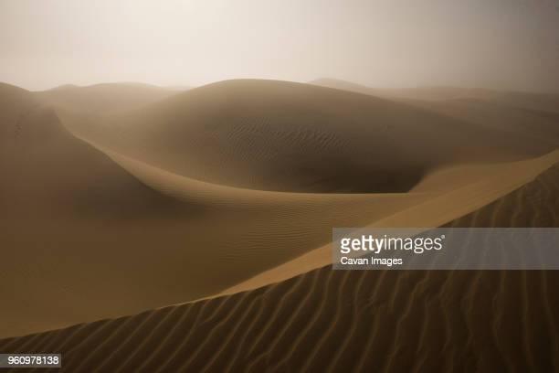 idyllic view of sand dunes against sky at desert - ピスモビーチ ストックフォトと画像