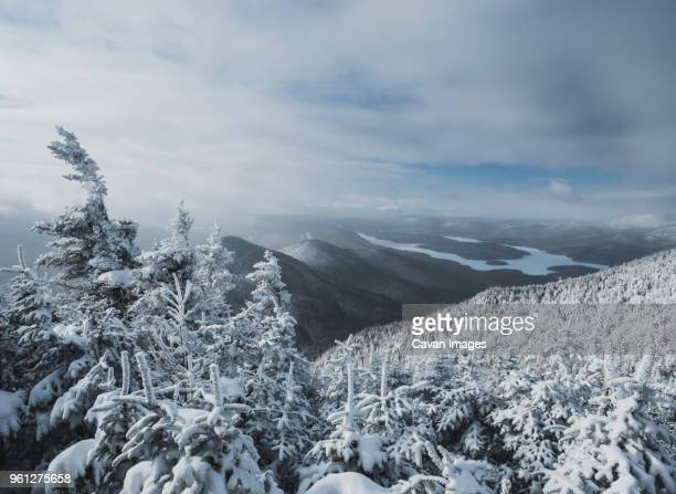 idyllic view of snow covered trees against cloudy sky at forest - lake placid stock pictures, royalty-free photos & images