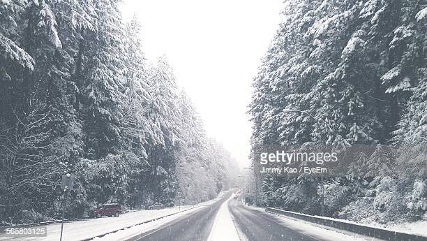 Idyllic View Of Snow Fall Covering Trees By Road