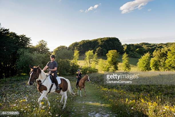 Idyllic View Over Jydelejet With Horses and Rider on Møn Denmark.