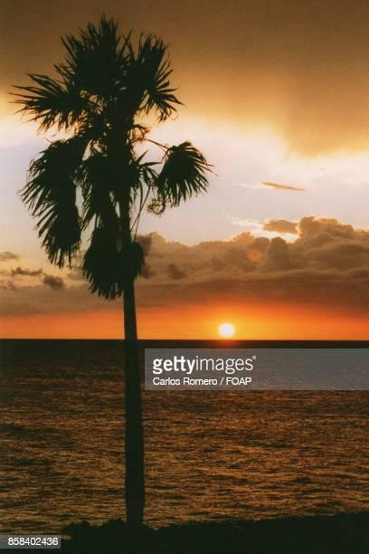 Idyllic view sea during sunset