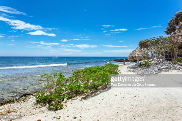 idyllic white sand beach in the caribbean sea in a sunny day, belize. - harvest caye stock pictures, royalty-free photos & images