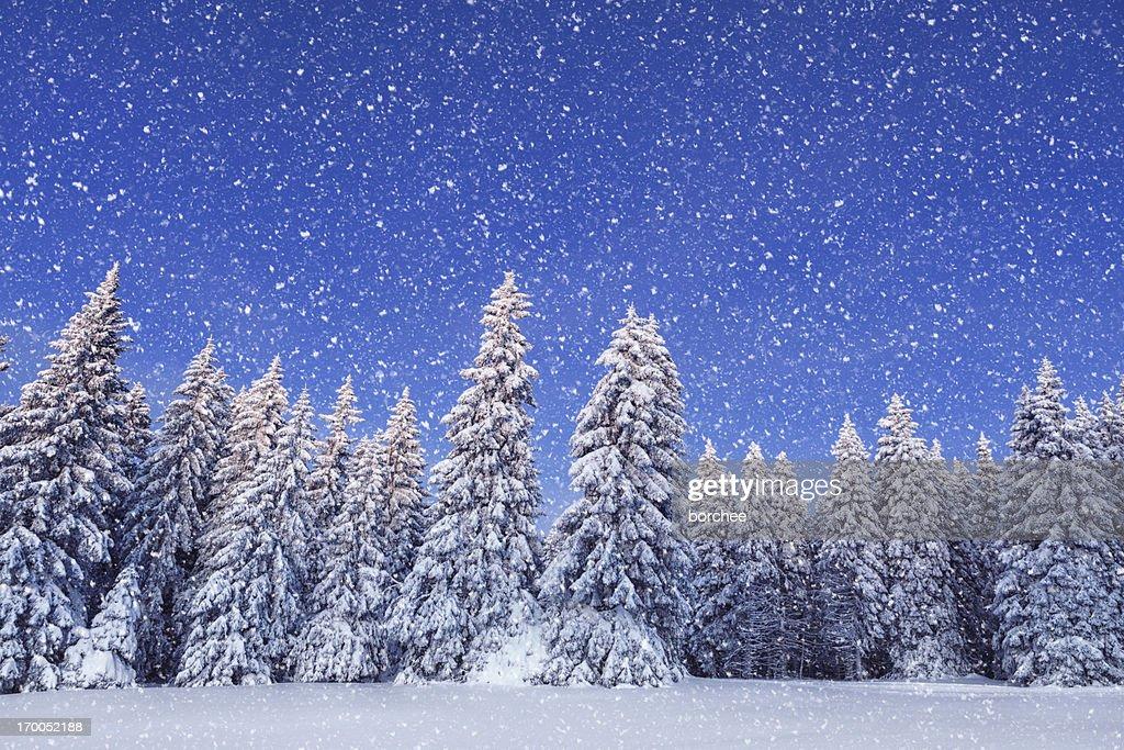Idyllic Winter Day : Stock Photo