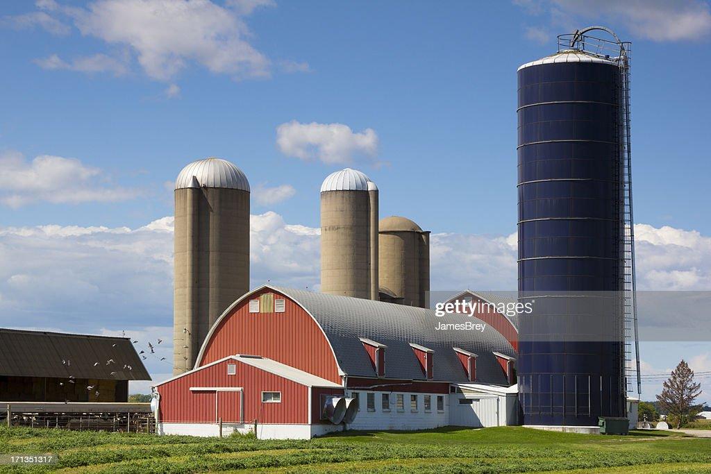 Idyllic Wisconsin Farm Red Barn Silos Stock Photo Getty
