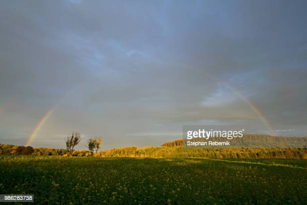 if the hills would have eyes / lower austria, austria (2013) - stephan rebernik stock-fotos und bilder