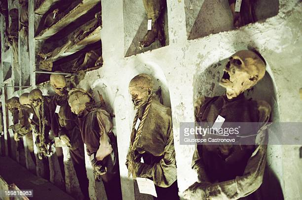 CONTENT] If you go to Sicily you can't miss the capuchin catacombs of Palermo something that confirms the ghoulish side of this city A cemetery that...
