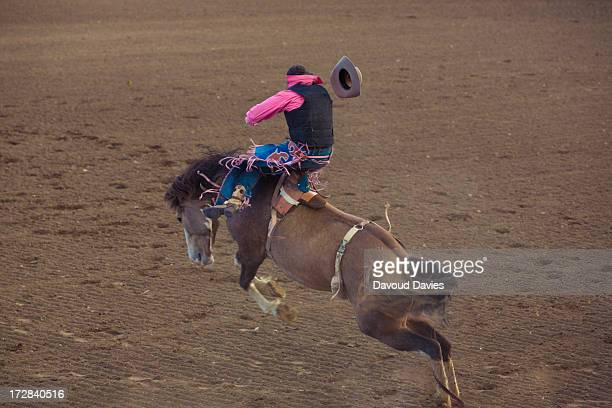 If you want to see an authentic Wyoming rodeo, Cody offers a sure thing: a nightly tussle between bulls, broncos, and cowboys, as well as roping,...