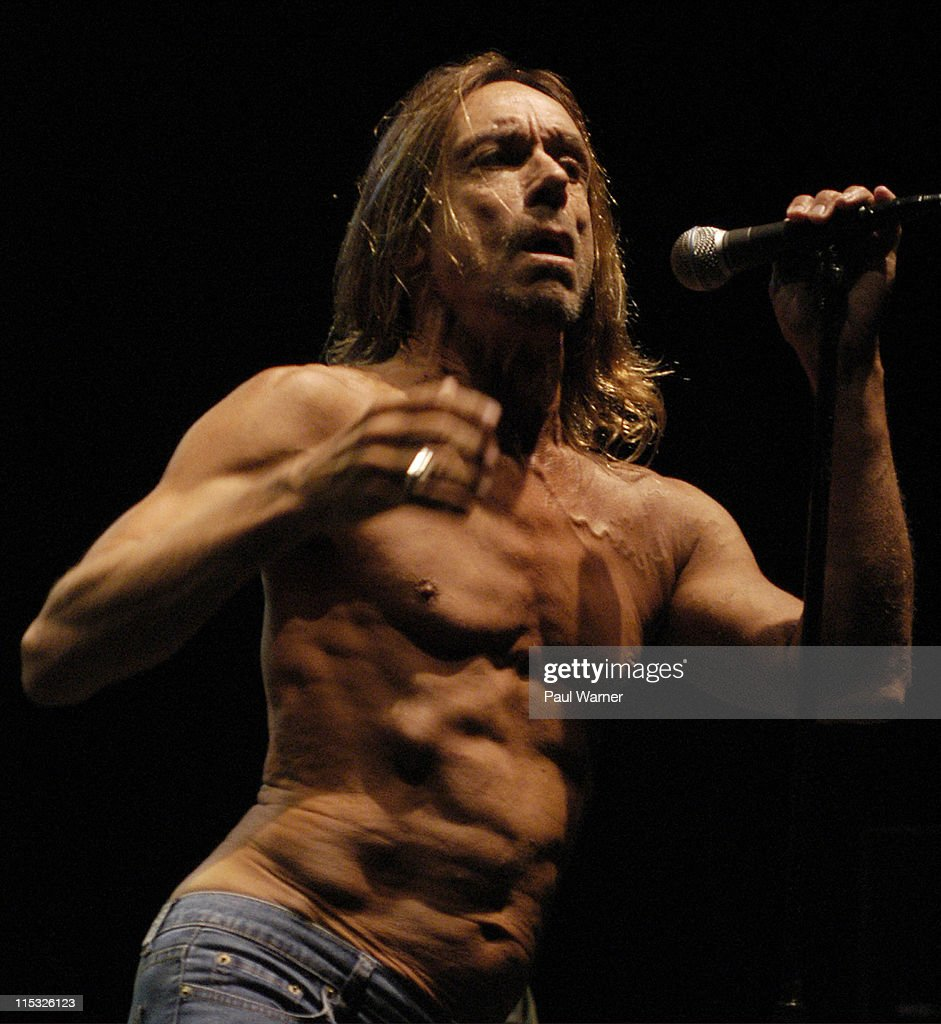 Iggy Pop and the Stooges during Iggy Pop and the Original Stooges, Ron Asheton and Scott Asheton, Homcoming Concert at in Clarkston, Michigan on August 25, 2003 at DTE Energy Music Theater in Clarkston, Michigan, United States.
