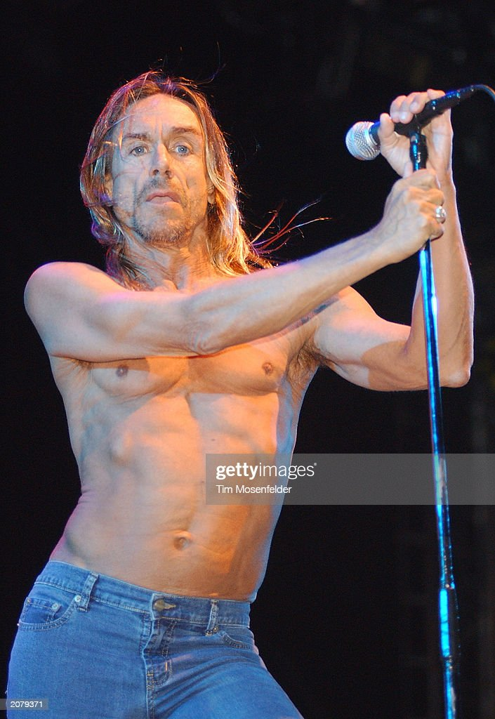 Iggy Pop and the Stooges perform at the Coachella Valley Music and Arts Festival on April 27, 2003 in Indio, California.