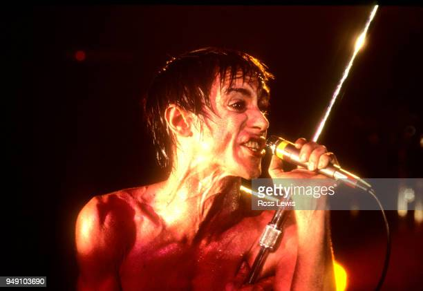 Iggy Pop performs at CBGB on May 13 1980 in New York City New York