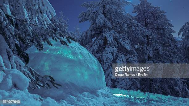 igloo by snow covered trees on mountain - igloo stock pictures, royalty-free photos & images