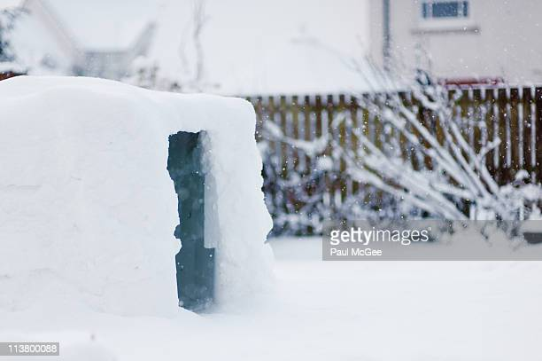 igloo in the garden - igloo stock pictures, royalty-free photos & images