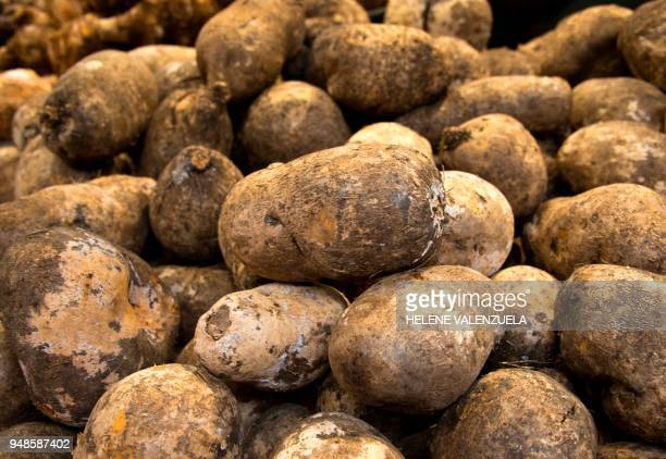 Igname or yam is pictured at the fruit and vegetable department of an 'O Marche' supermarket in SaintFrancois on the French overseas territory of...