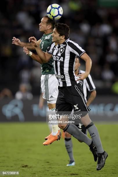 Igor Rabello of Botafogo struggles for the ball with Alejandro Guerra of Palmeiras during the match between Botafogo and Palmeiras as part of...