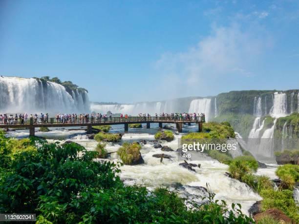 ブラジルのイグアスの滝 - イグアス滝 ストックフォトと画像