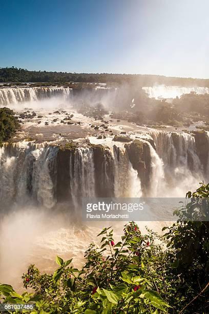 iguaçu national park, parana, brazil - イグアス滝 ストックフォトと画像
