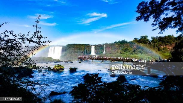 iguazú falls or iguaçu falls. - crmacedonio imagens e fotografias de stock