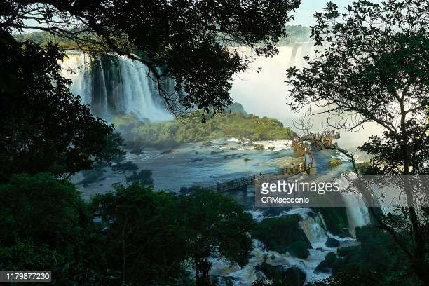 iguazú falls or iguaçu falls. - crmacedonio - fotografias e filmes do acervo