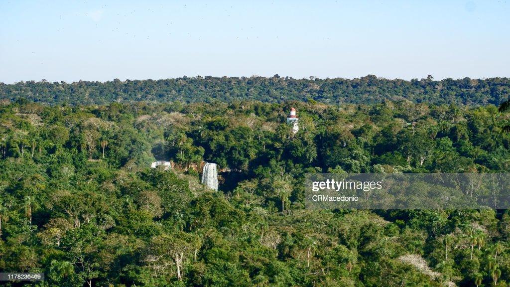 Iguazú National Park (Argentina) : Stock Photo